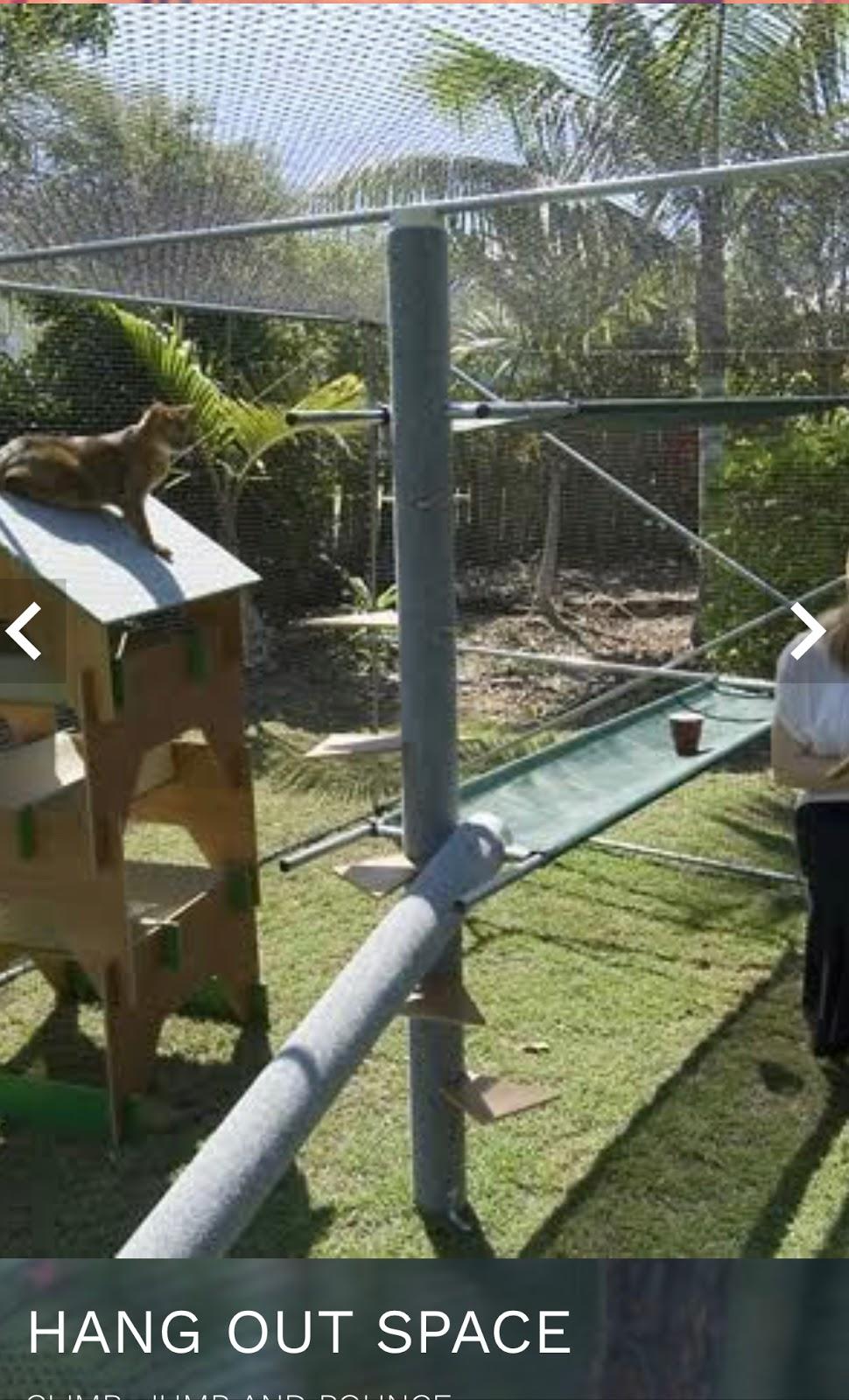 Catmax Cat Enclosures | store | 63 OConnell Tce, Bowen Hills QLD 4006, Australia | 0732570924 OR +61 7 3257 0924