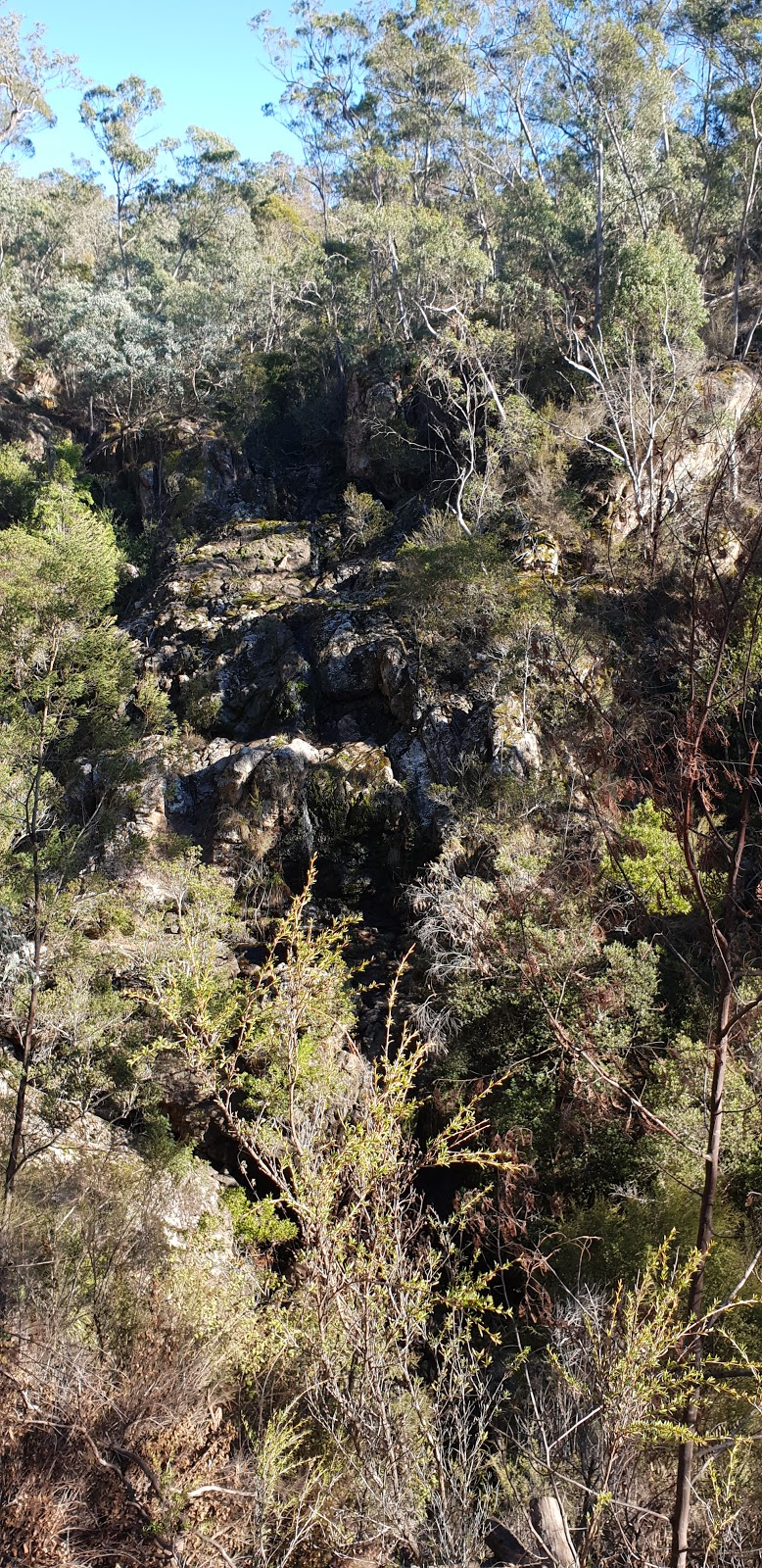 Spring Creek Falls | point of interest | Caves Rd, Buchan VIC 3885, Australia | 131963 OR +61 131963