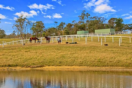 Ryga Park   park   115 Bloodtree Rd, Mangrove Mountain NSW 2250, Australia   0414352494 OR +61 414 352 494