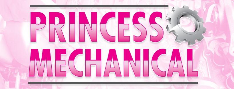 Princess Mechanical | car repair | 1426 Kelsey Creek Rd, Kelsey Creek QLD 4800, Australia | 0749452140 OR +61 7 4945 2140