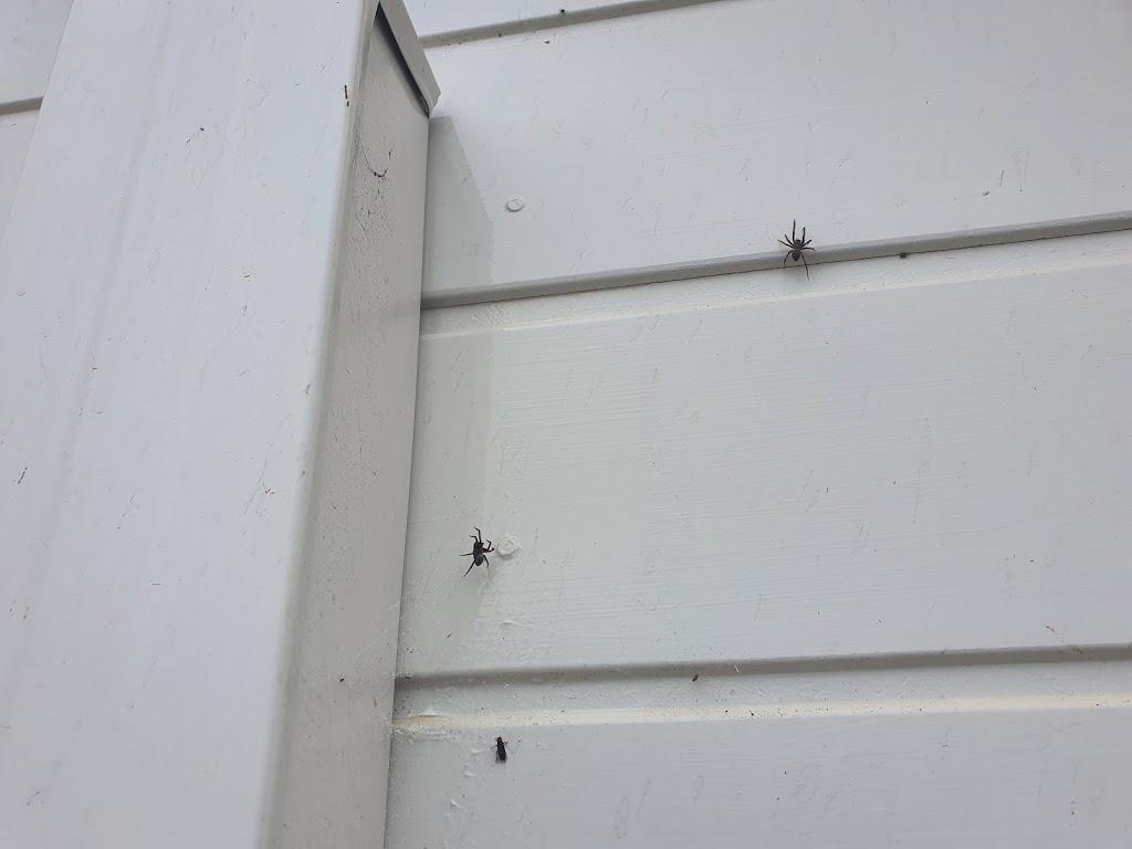 Universal pest solutions | home goods store | 11 Terrigal St, Morisset NSW 2264, Australia | 0450207853 OR +61 450 207 853