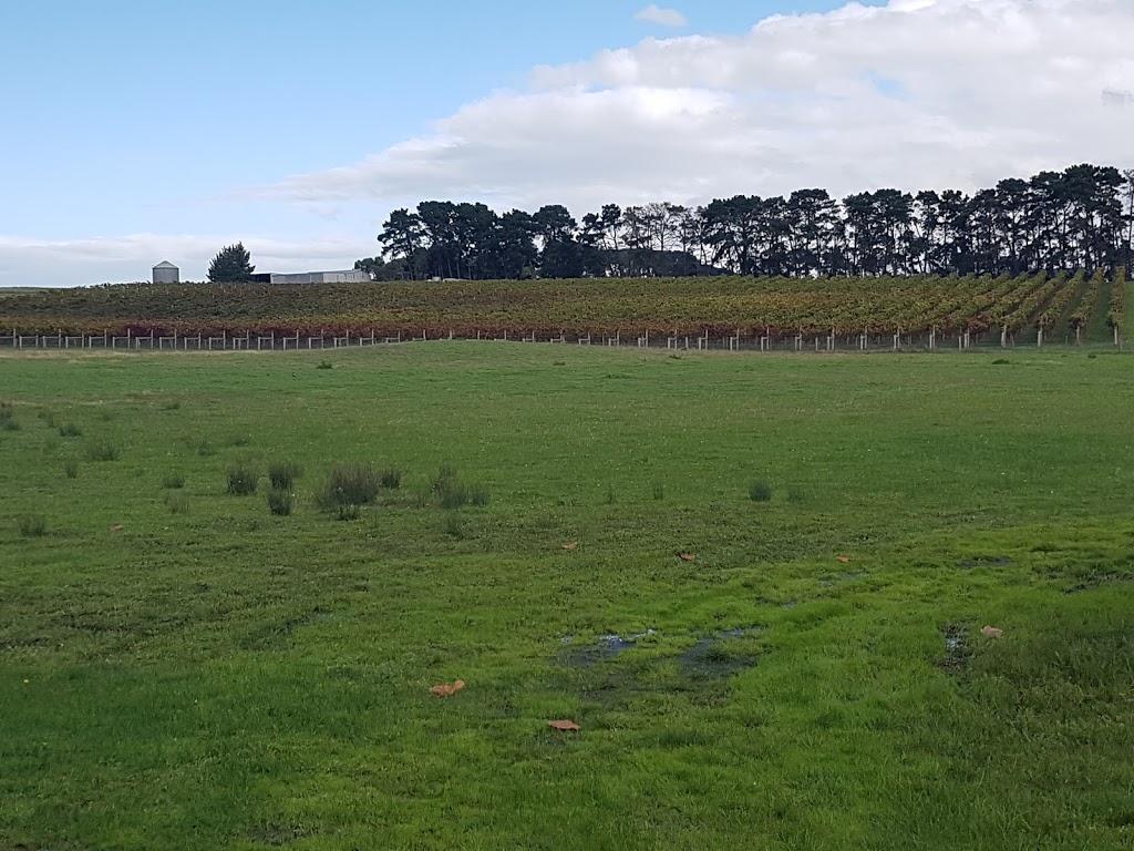 Wilsons Wine Tours Geelong   travel agency   246 Yarra St, South Geelong VIC 3220, Australia   0405173736 OR +61 405 173 736