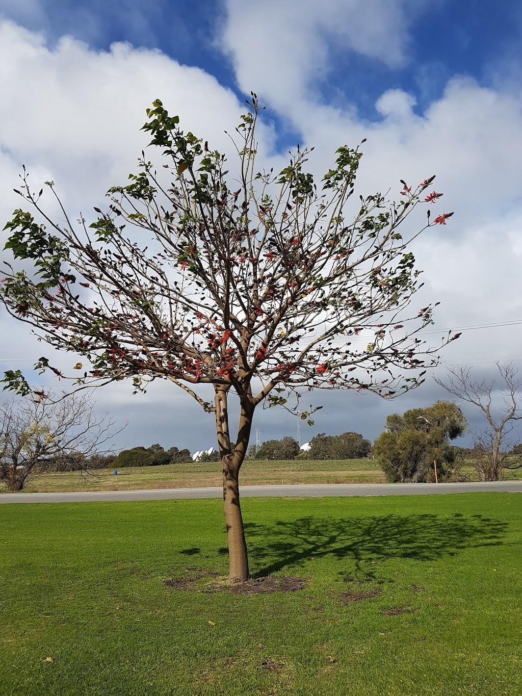 Altone Park Leisure Centre   library   332 Benara Rd, Beechboro WA 6063, Australia   0892078555 OR +61 8 9207 8555