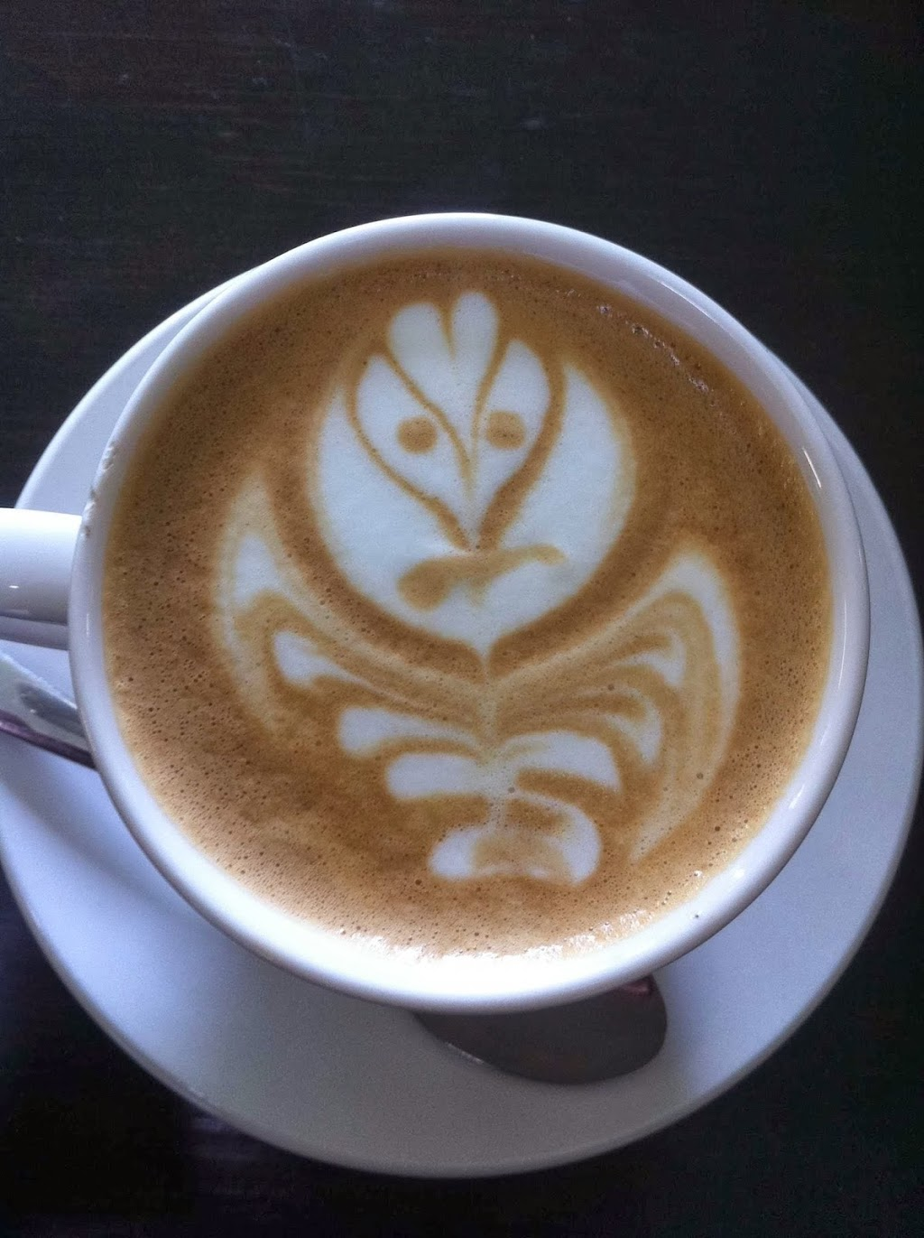 Silipo Coffee   cafe   9/54 Bailey Cres, Southport QLD 4215, Australia   0755280613 OR +61 7 5528 0613