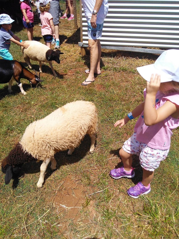 Animal Farm Sunshine Coast   cafe   230 Bunya Rd, North Arm QLD 4561, Australia