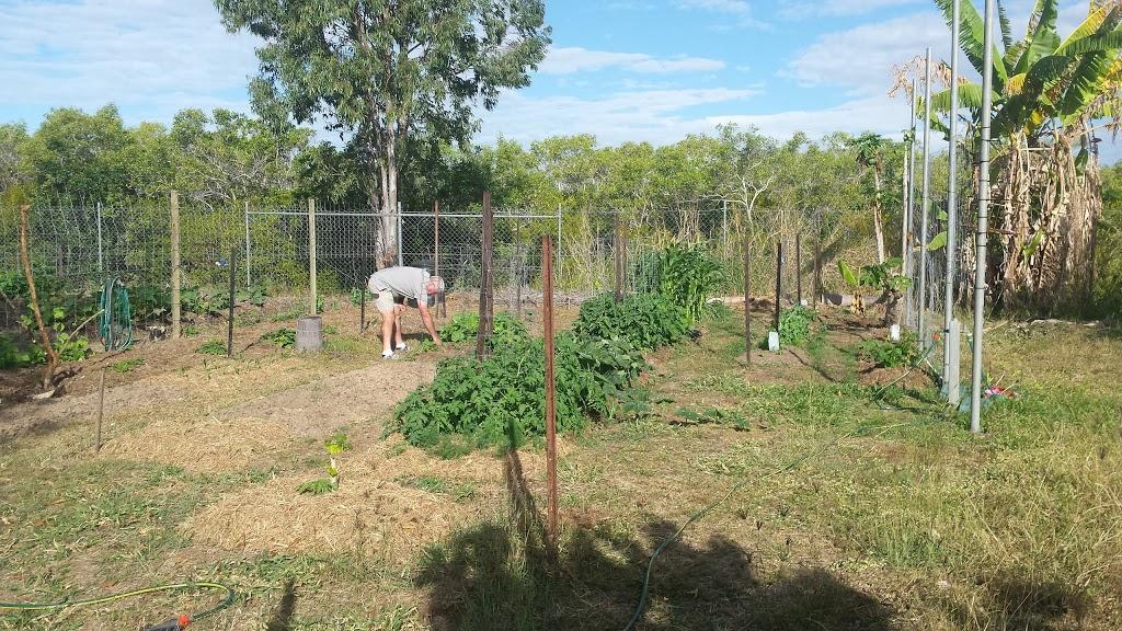 Railway Estate Dog Park | park | Railway Estate QLD 4810, Australia | 0732277111 OR +61 7 3227 7111