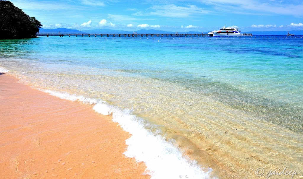 Great Adventures - Cairns, Great Barrier Reef & Green Island Cru   travel agency   1 Spence St, Cairns City QLD 4870, Australia   0740449944 OR +61 7 4044 9944