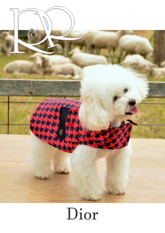 Rommi & Rafe | clothing store | 71 Elizabeth St, Geelong West VIC 3218, Australia | 0411433761 OR +61 411 433 761