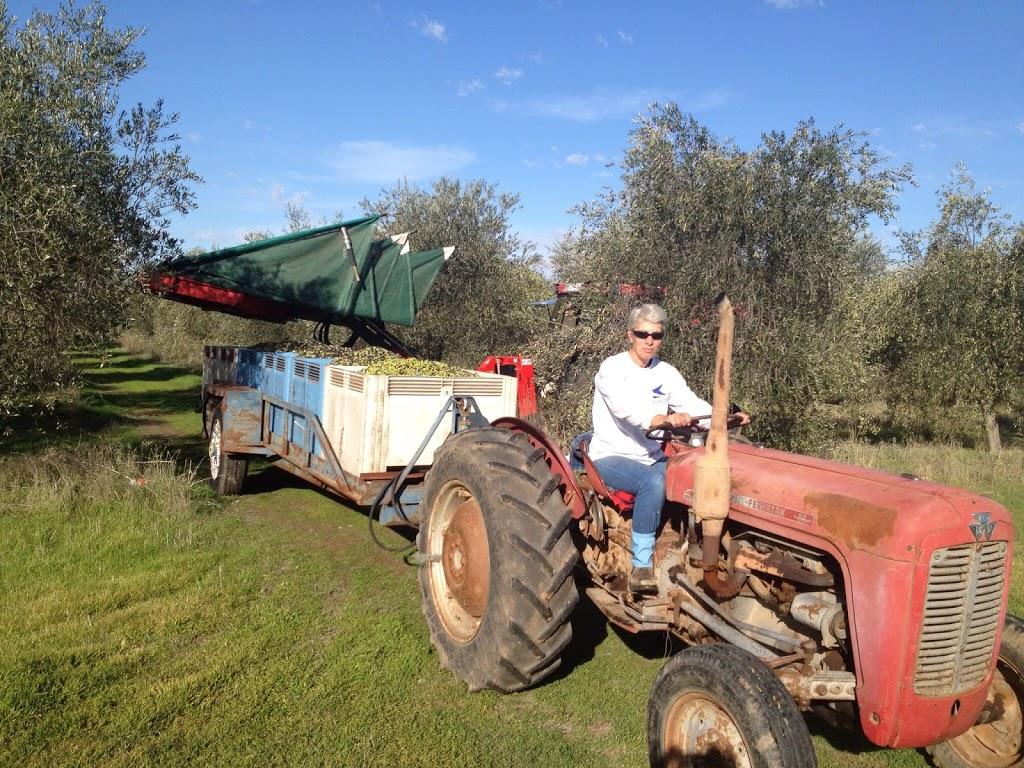 Salute Oliva | food | 5 Templeton Dr, Boort VIC 3537, Australia | 0418552651 OR +61 418 552 651