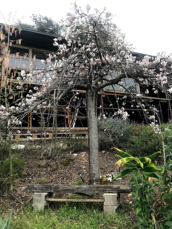 Mountain Spring Monastery | health | 2657 Bells Line of Rd, Bilpin NSW 2758, Australia