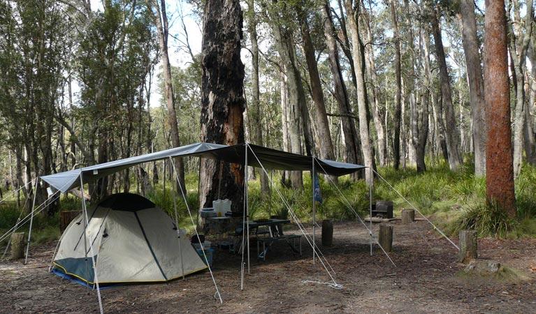 Barokee campground | campground | Barokee Road, Ebor NSW 2453, Australia | 0266572309 OR +61 2 6657 2309