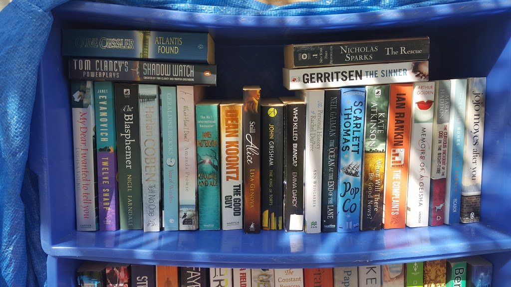Alex Street Library | library | 20 Admiralty Dr, Alexandra Headland QLD 4572, Australia