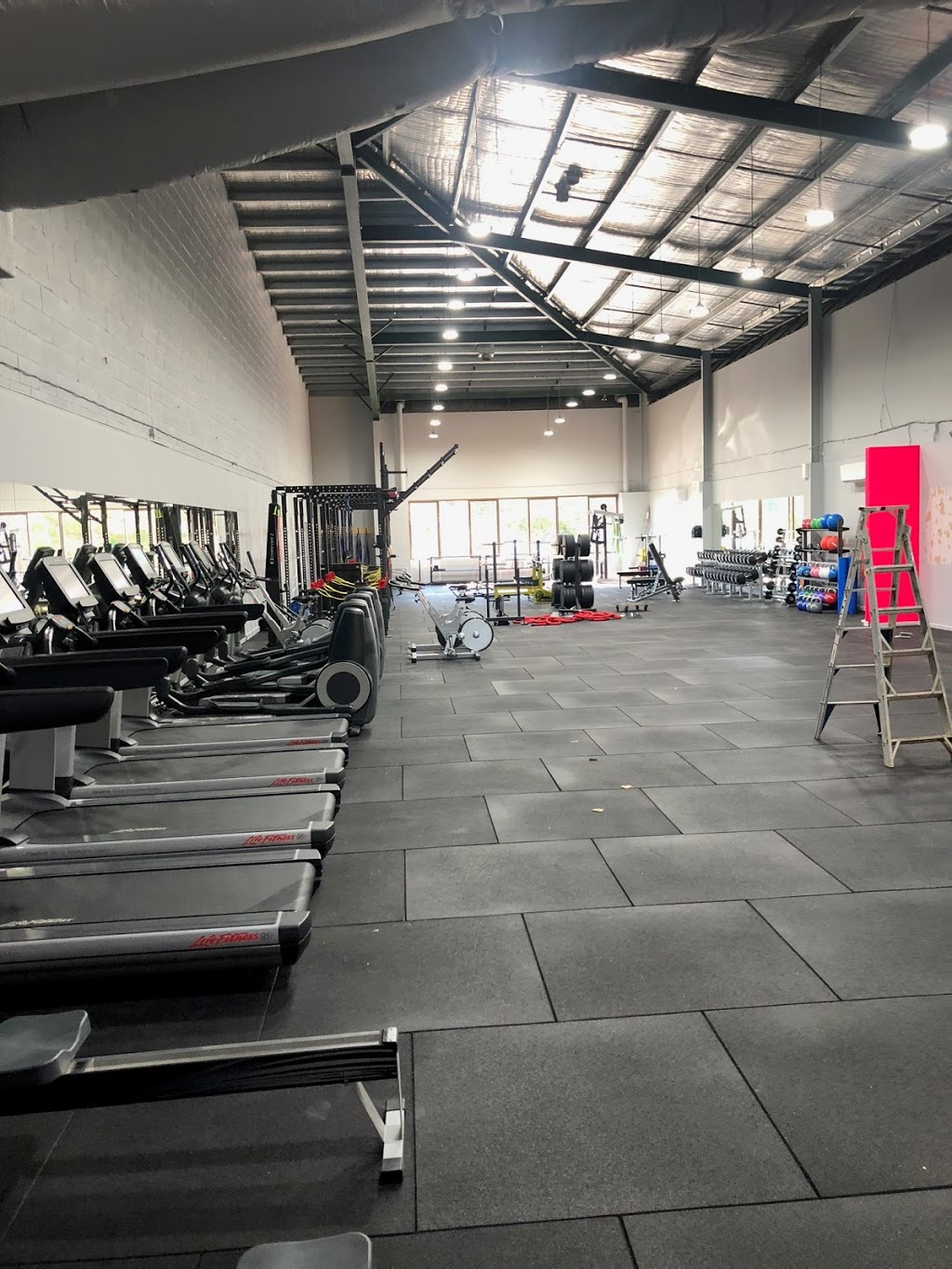 PRORAW GYM | gym | 350A Blackburn Rd, Doncaster East VIC 3109, Australia | 0388333880 OR +61 3 8833 3880