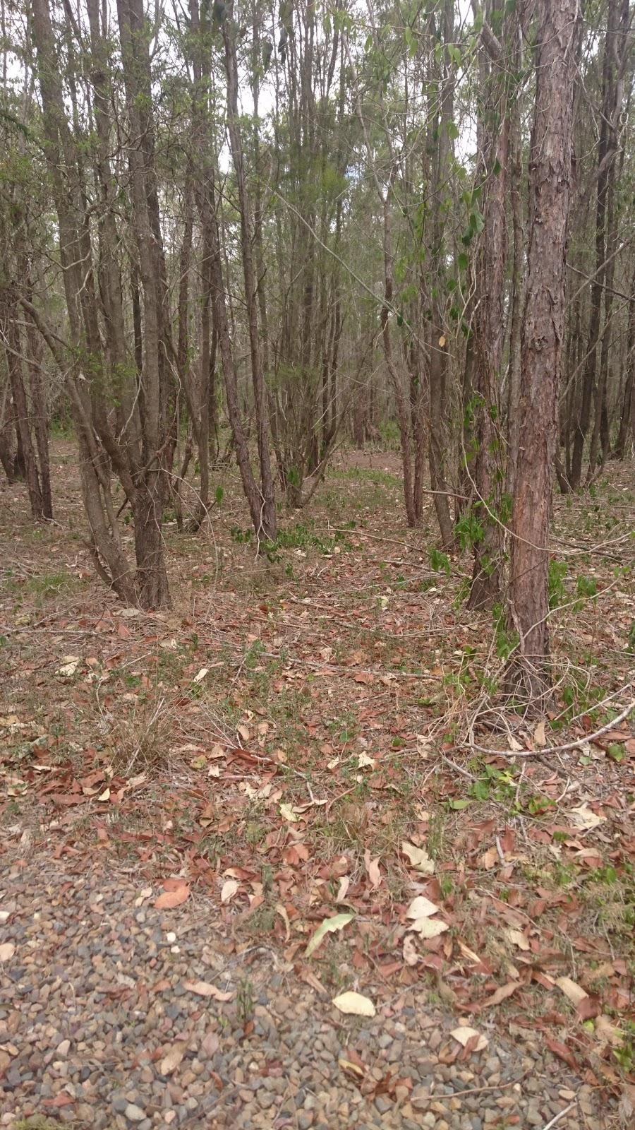 Wolston Creek Bushland Reserve | park | 43 Riverpoint Blvd, Riverhills QLD 4074, Australia | 0734038888 OR +61 7 3403 8888