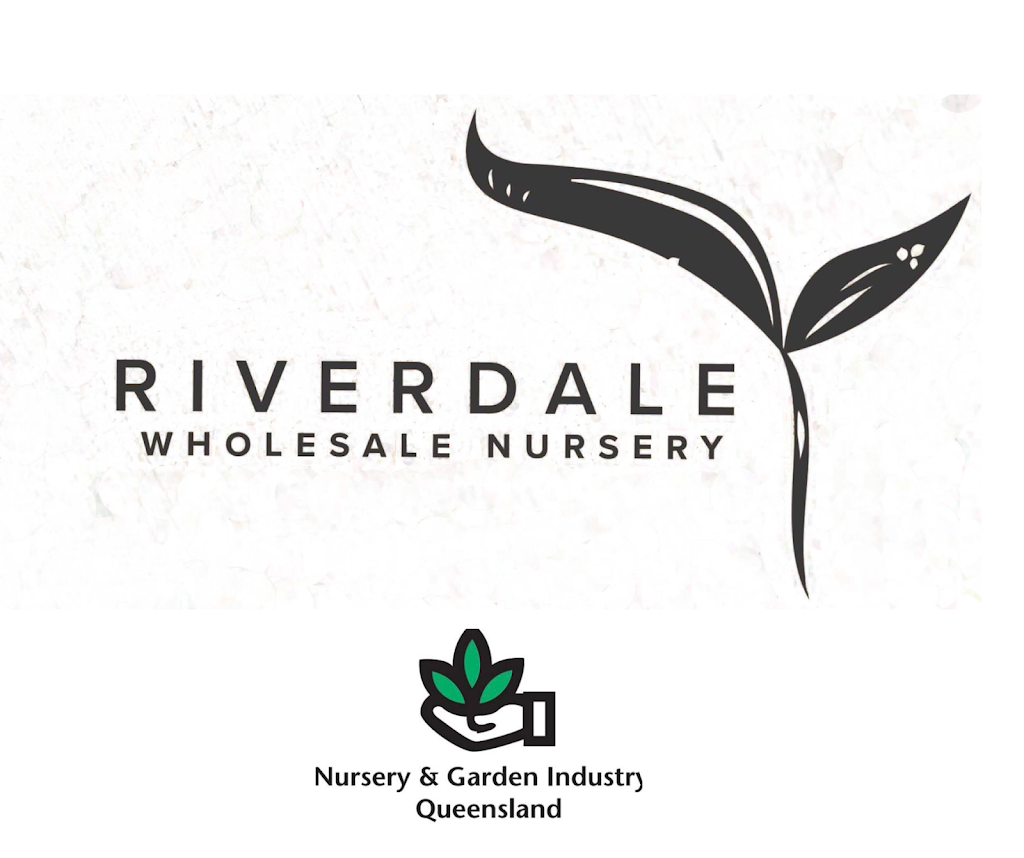 Riverdale Wholesale Nursery | point of interest | Dreyer Rd, Eagleby QLD 4207, Australia | 0407870773 OR +61 407 870 773