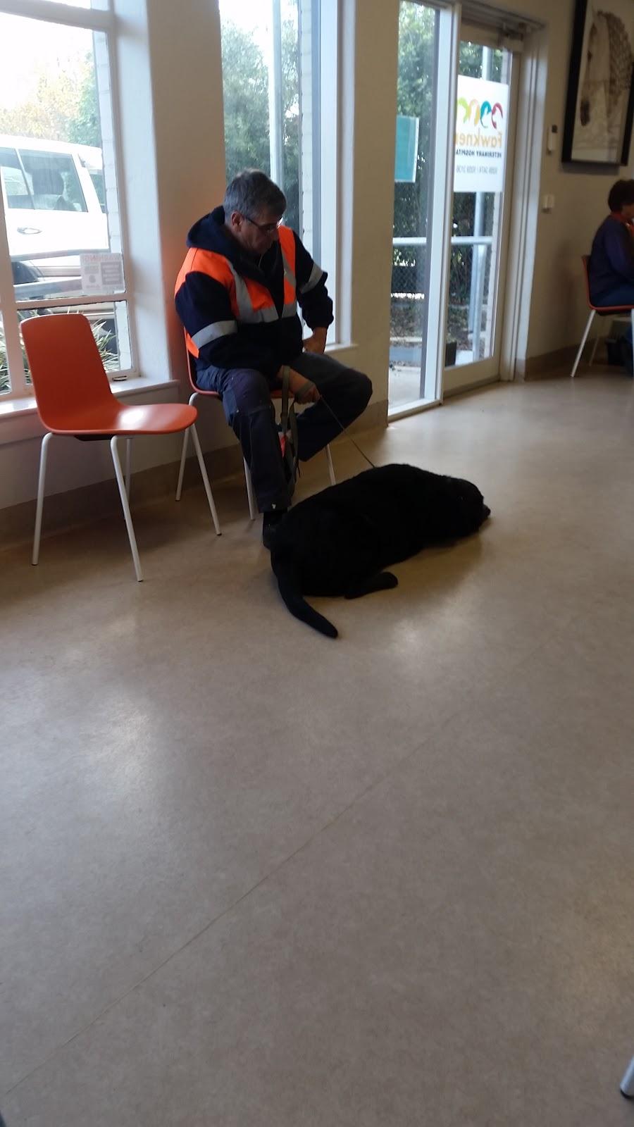 Fawkner Veterinary Hospital | veterinary care | 1148 Sydney Rd, Fawkner VIC 3060, Australia | 0393593474 OR +61 3 9359 3474