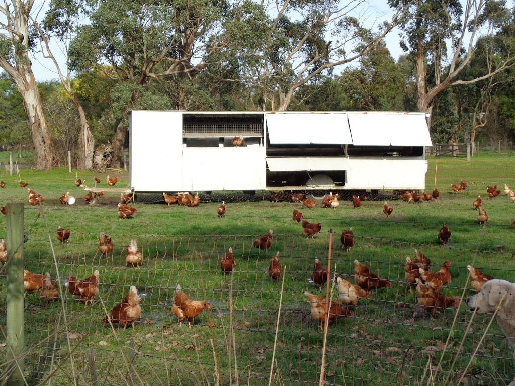 Little Yarra Free Range Eggs   store   150 Doon Rd, Launching Place VIC 3139, Australia   0407331117 OR +61 407 331 117