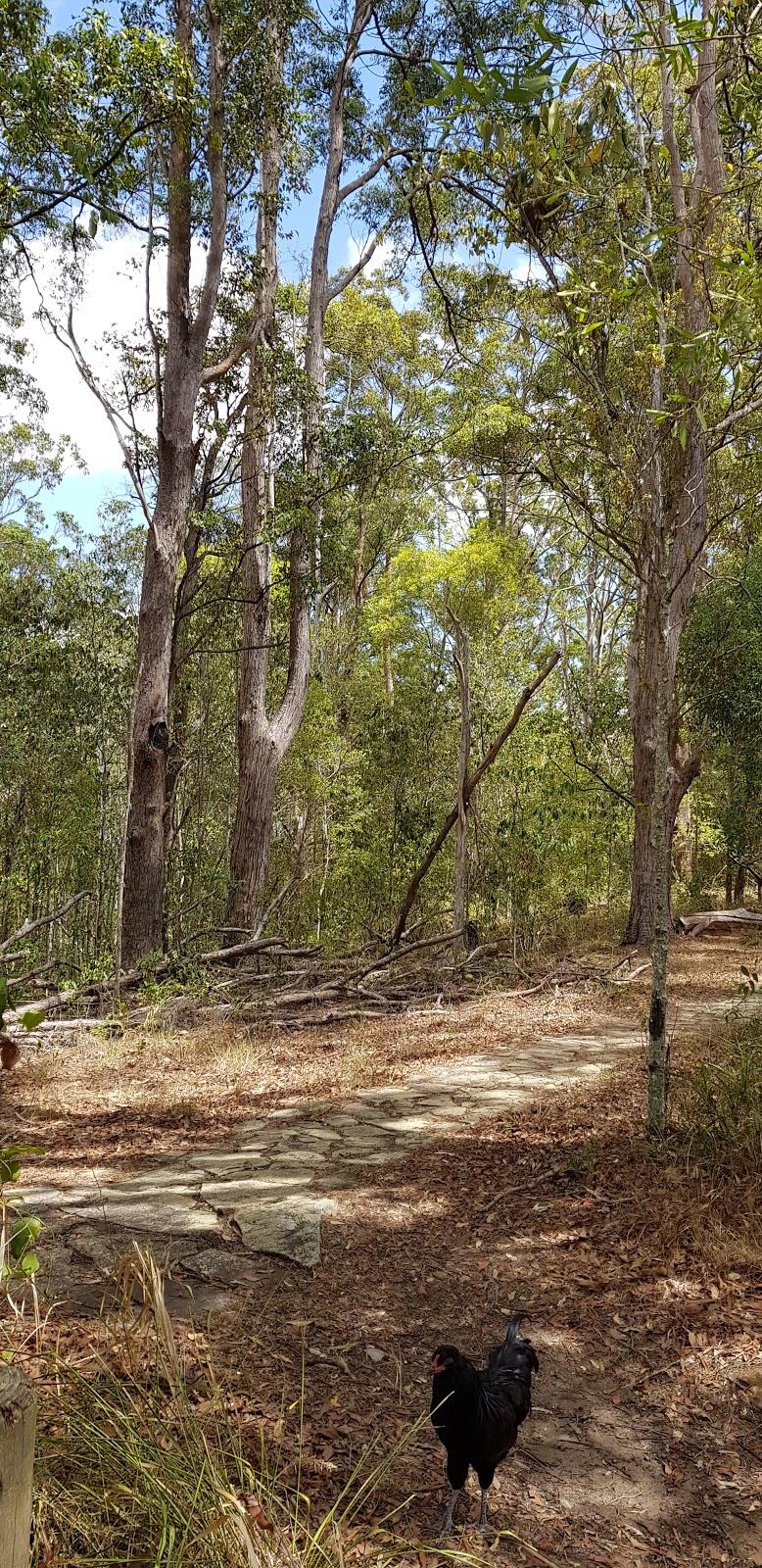 Tucki Tucki Nature Reserve | park | 1 Munro Wharf Rd, Tucki Tucki NSW 2480, Australia