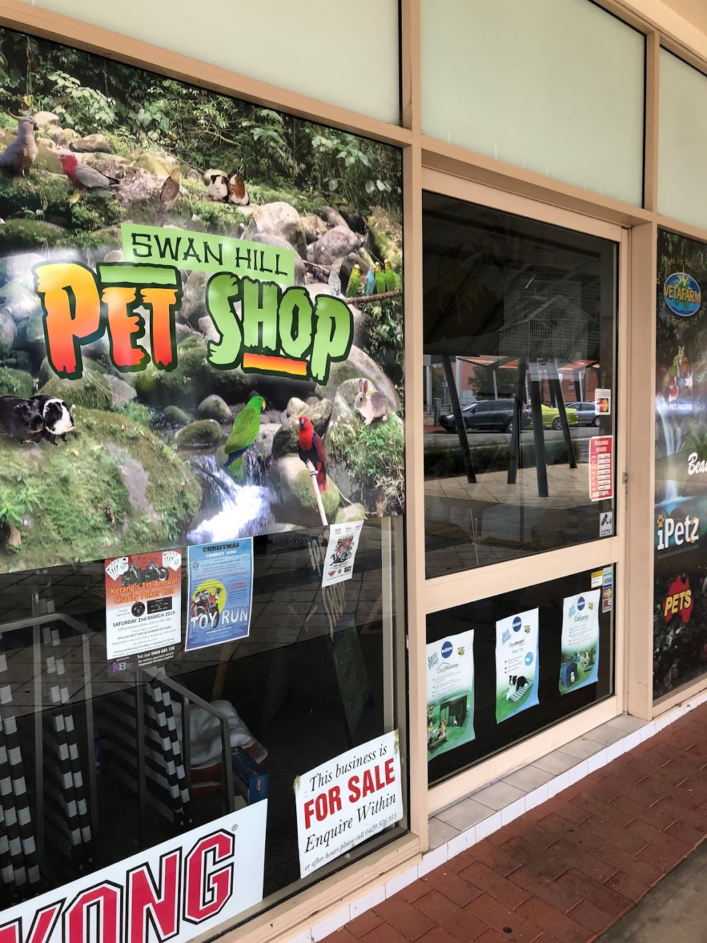 Swan hill pet shop | pet store | 109 Campbell St, Swan Hill VIC 3585, Australia | 0350323002 OR +61 3 5032 3002