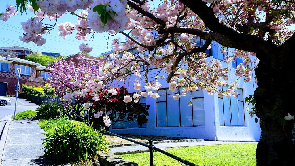 Visakey Tasmania   travel agency   26 Mortimer Ave, North Hobart TAS 7000, Australia   0404747318 OR +61 404 747 318