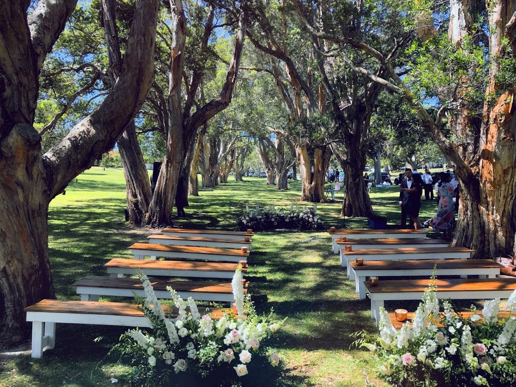 Paperbark Grove and BBQs   museum   Park,, Centennial Park NSW 2021, Australia