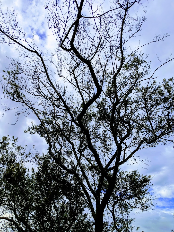 Bullum Bullum Reserve | park | 5 Peterborough Cres, Deer Park VIC 3023, Australia