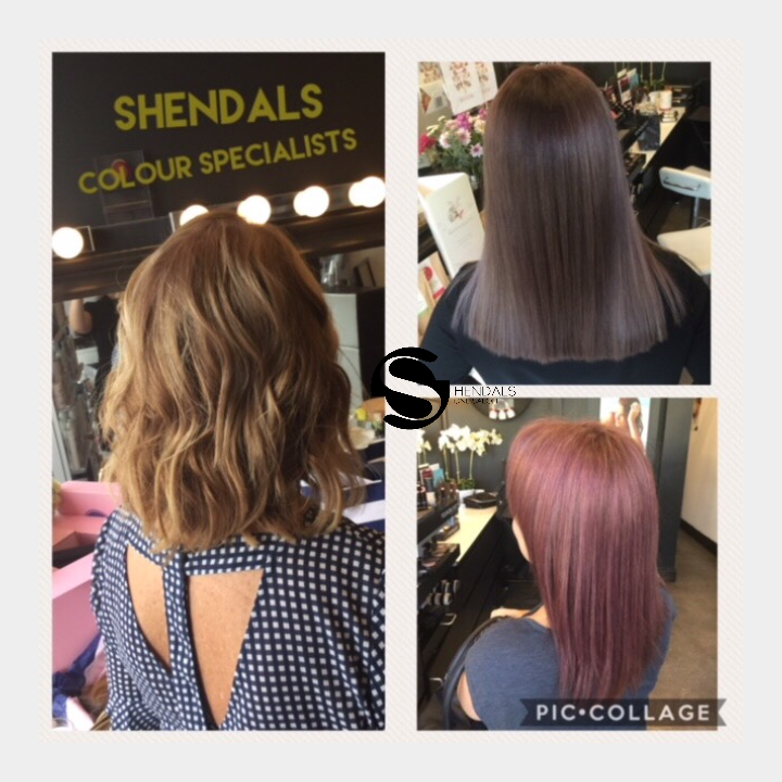 Shendals One Salon | hair care | 6/3 Kearns Cres, Applecross WA 6153, Australia | 0893163887 OR +61 8 9316 3887