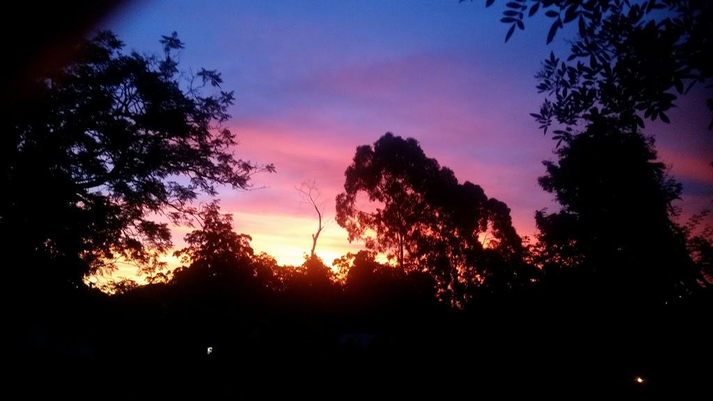 Clarina Street Park | park | 2A Clarina St, Chapel Hill QLD 4069, Australia