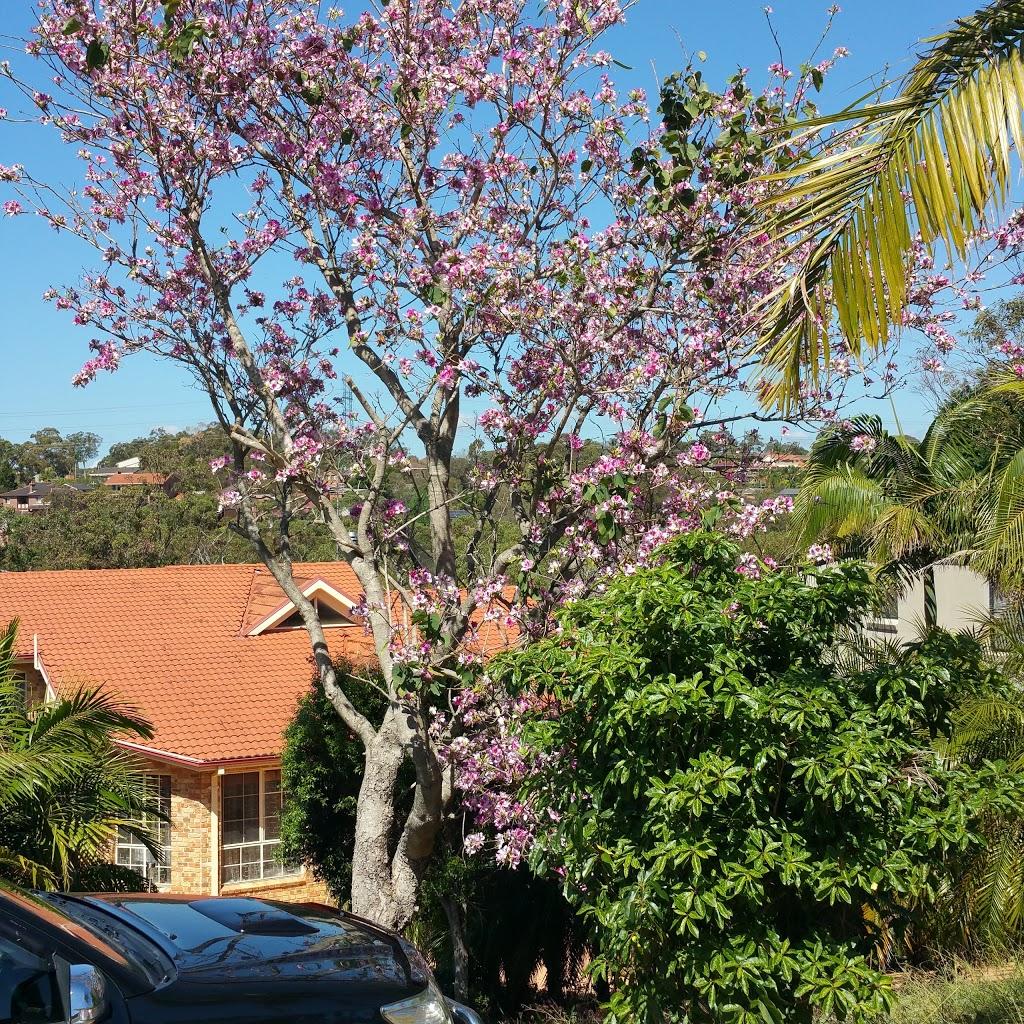 Illawong Shopping Village   shopping mall   273 Fowler Rd, Illawong NSW 2234, Australia   0295436400 OR +61 2 9543 6400