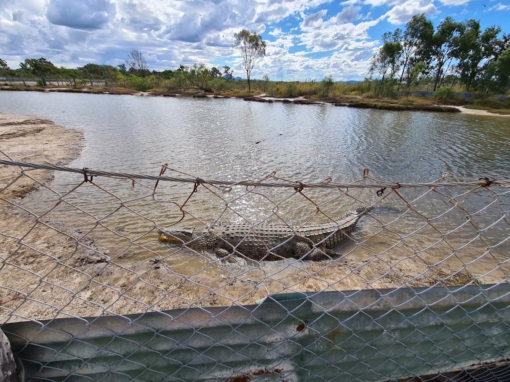 Koorana Crocodile Farm | tourist attraction | 65 Savages Rd, Coowonga QLD 4702, Australia | 0749344749 OR +61 7 4934 4749