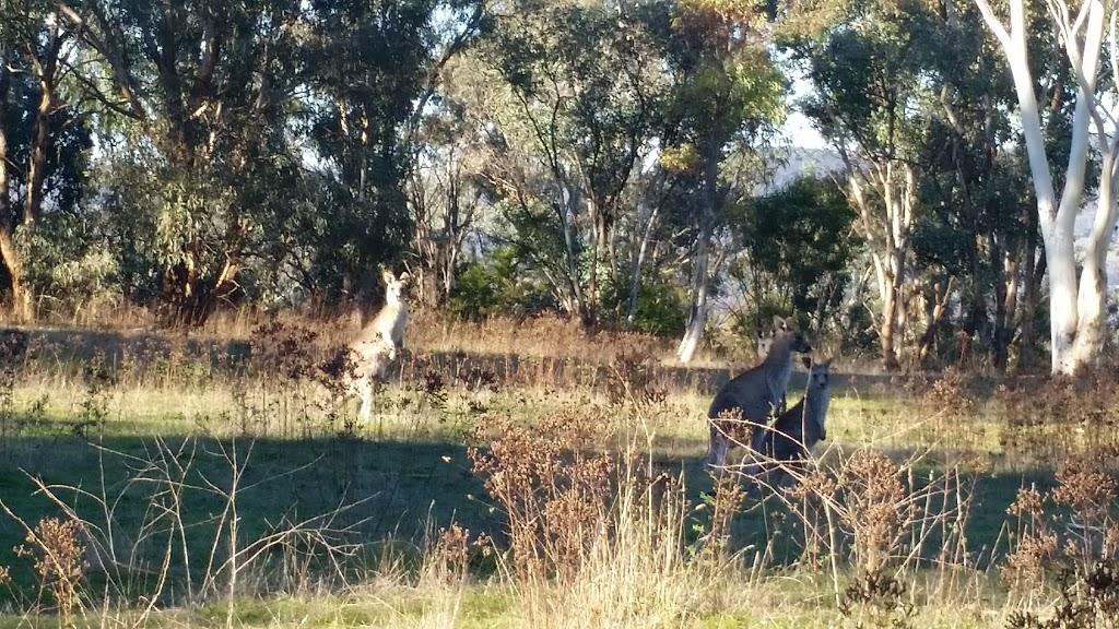 Bruce Ridge Nature Reserve | park | Bruce ACT 2677, Australia | 132281 OR +61 132281