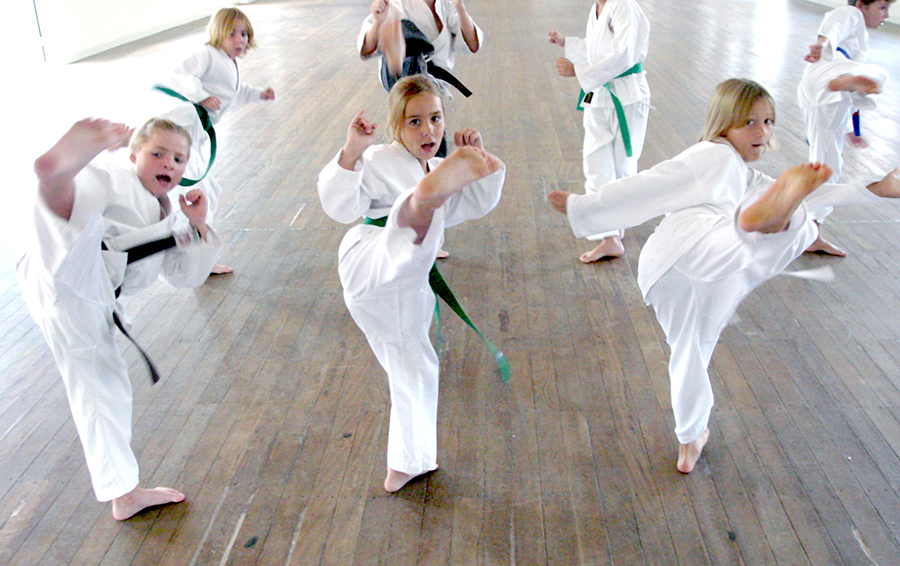 Universal Self-Defence Academy   store   4 Grant St, Maitland NSW 2320, Australia   0403934345 OR +61 403 934 345