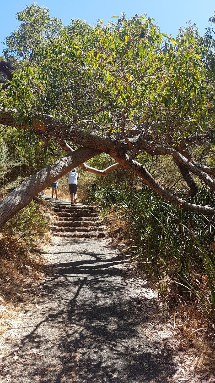 Kokoda Walk Trail | park | 173 Mounts Bay Rd, Crawley WA 6009, Australia | 0894803600 OR +61 8 9480 3600