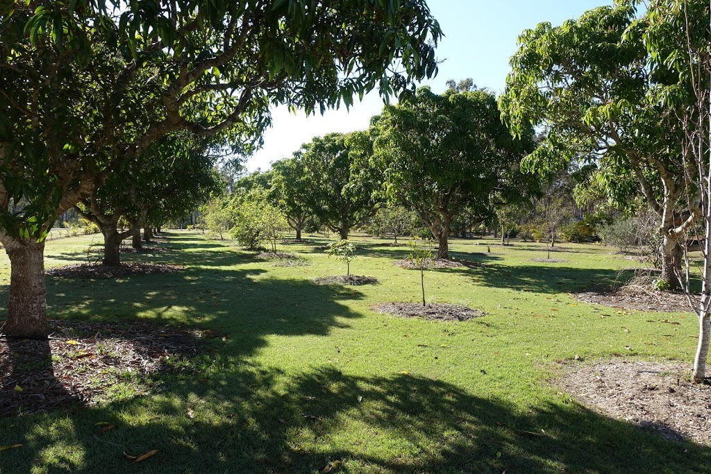 Riverview RV | rv park | 28 Dundathu Rd, Dundathu QLD 4650, Australia | 0400931113 OR +61 400 931 113