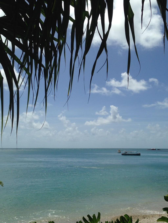 Fitzroy Island Cairns.com | travel agency | 101/27-29 Wharf St, Cairns City QLD 4870, Australia | 0740402100 OR +61 7 4040 2100