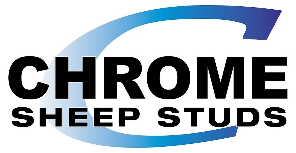 Chrome Sheep Studs | food | 6111 Dartmoor-Hamilton Rd, Yulecart VIC 3301, Australia | 0417149805 OR +61 417 149 805