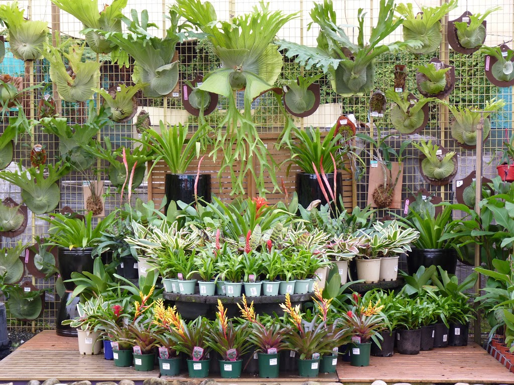 Flower Power Garden Centre Glenhaven | furniture store | 609 Old Northern Rd, Glenhaven NSW 2156, Australia | 0296343411 OR +61 2 9634 3411