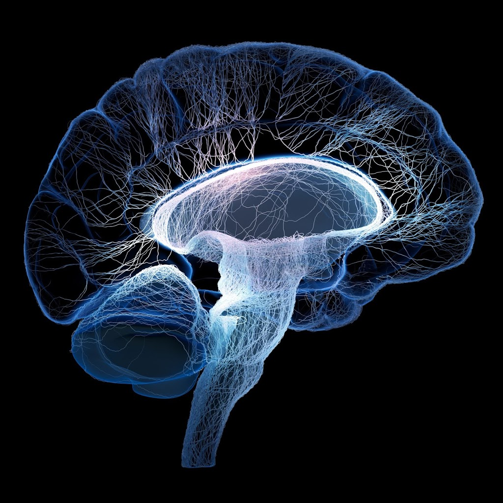Neurology & Clinical Neurophysiology Services | doctor | 34 Hawkesbury Valley Way, Windsor NSW 2756, Australia | 0297939200 OR +61 2 9793 9200