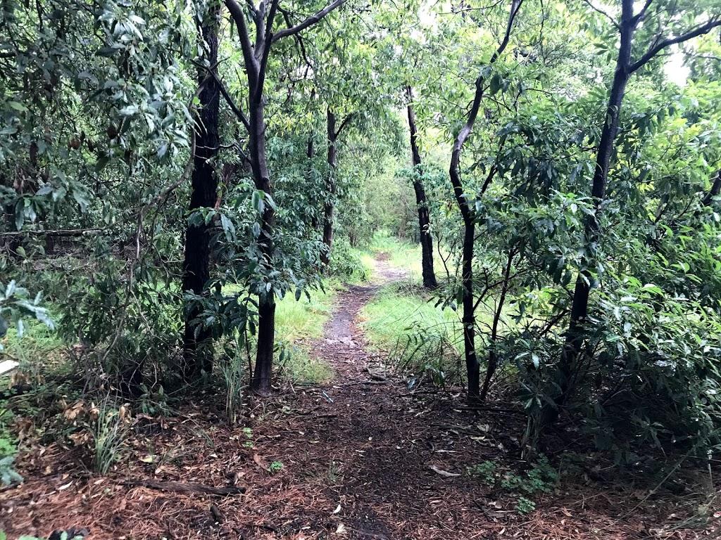 Declan's mountain bike jump trail | gym | 264 Canterbury Rd, Heathmont VIC 3135, Australia