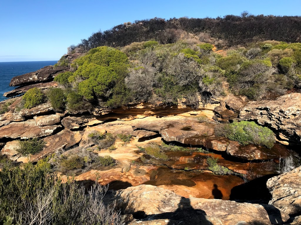 Curra Moors Track Entry & Parking   parking   Royal National Park NSW 2233, Australia