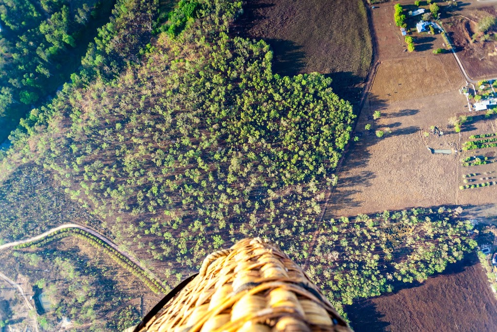 Hot Air Balloon Cairns | travel agency | 1 Spence St, Cairns City QLD 4870, Australia | 0740399900 OR +61 7 4039 9900
