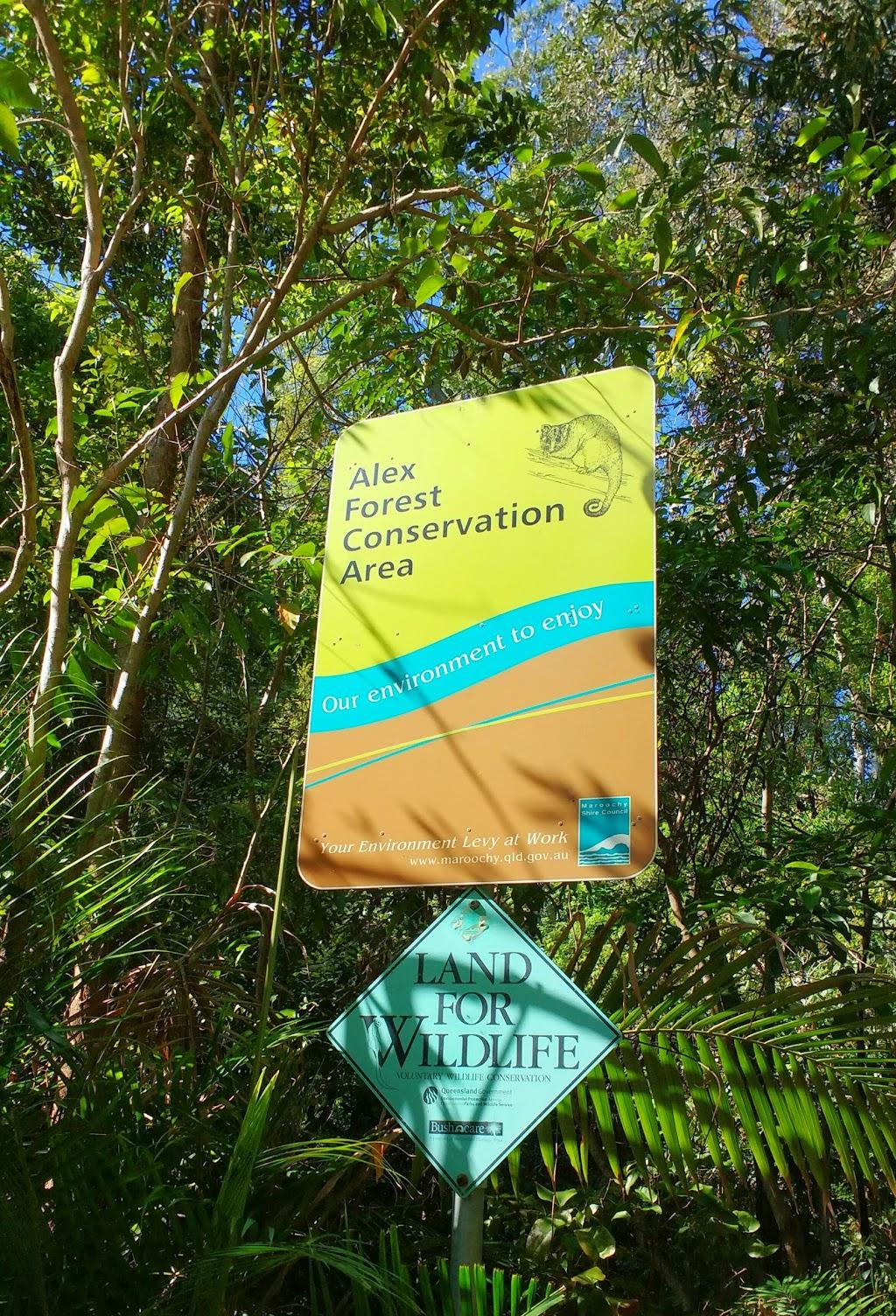 Alex Forest Conservation Park | museum | Alexandra Headland QLD 4572, Australia