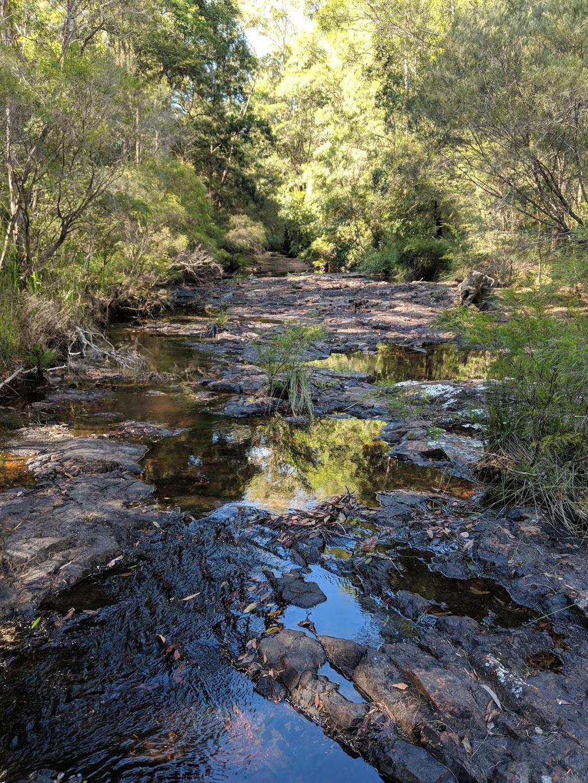 Whian Whian State Conservation Area | park | Minyon Falls Rd, Whian Whian NSW 2480, Australia | 0266270200 OR +61 2 6627 0200