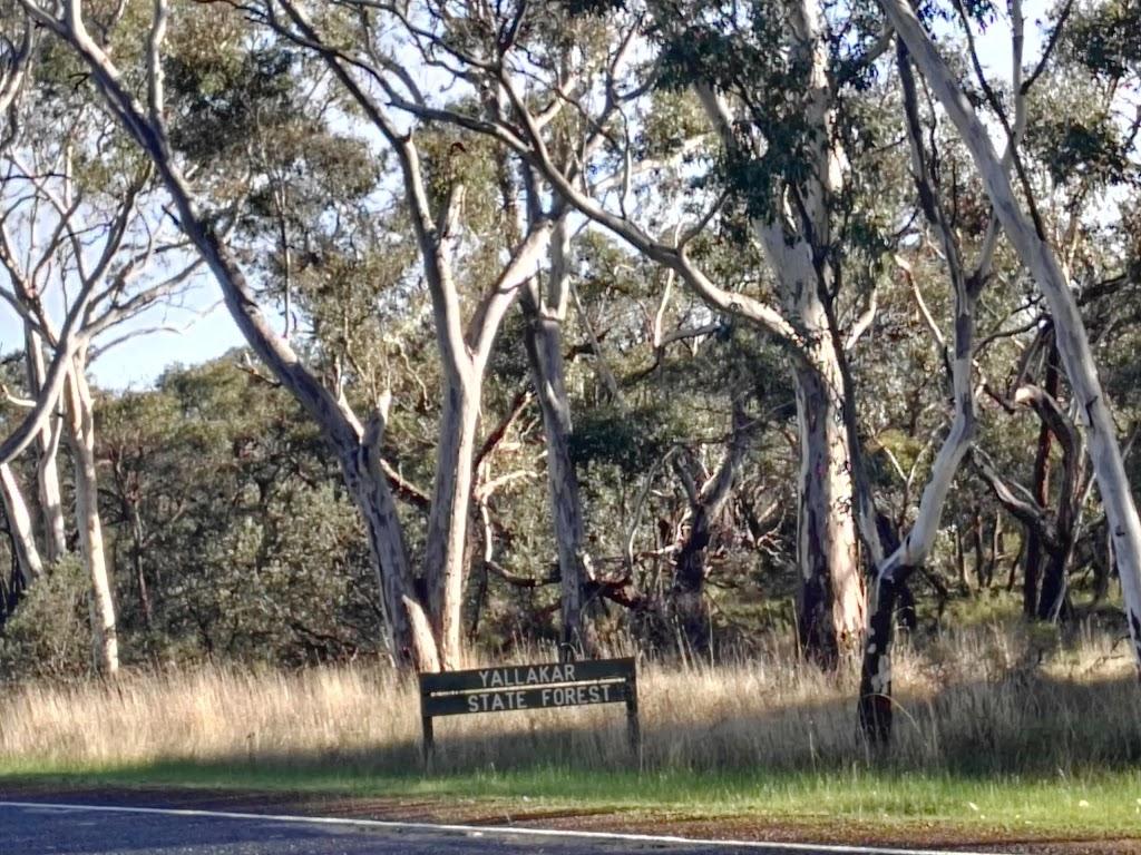 Yallakar State Forest | museum | 7095 Coleraine-Edenhope Rd, Kadnook VIC 3318, Australia