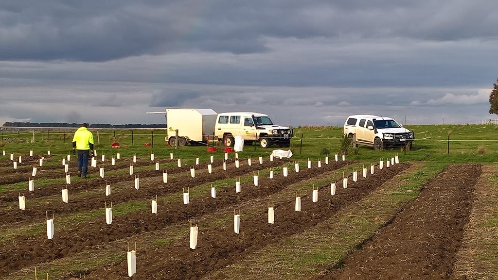 OzTrees Nursery and Plantation Services | point of interest | 569 Warrowie Rd, Irrewarra VIC 3249, Australia | 0352336280 OR +61 3 5233 6280