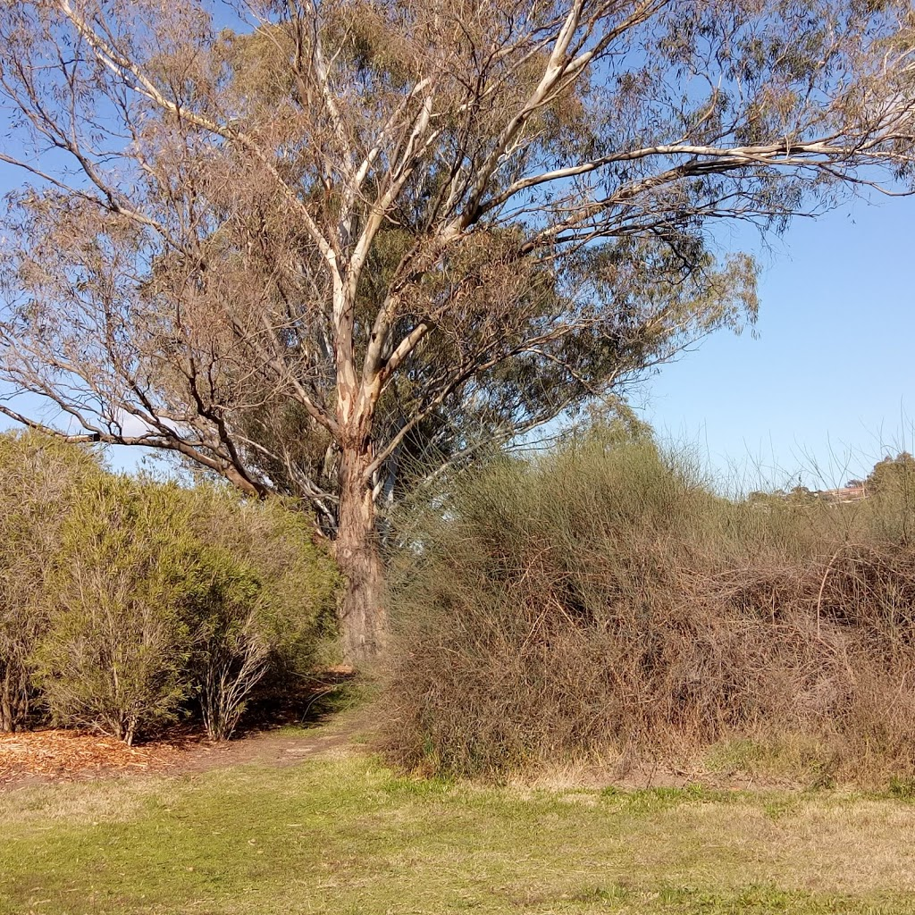Fyans Park Boat Ramp | park | W Fyans St, Highton VIC 3216, Australia