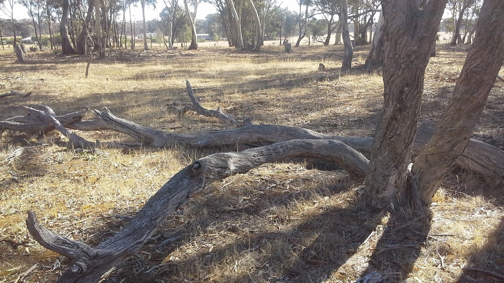 Mataranka Scout Camp   campground   Hard Hills Track, Dunolly VIC 3472, Australia   0438384802 OR +61 438 384 802