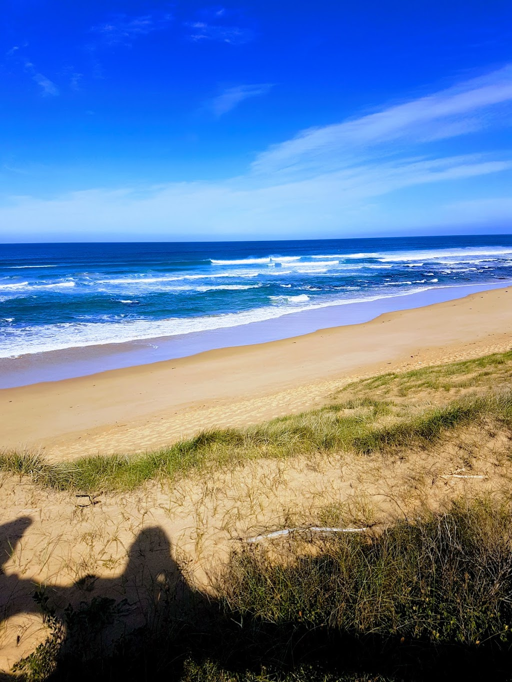 St Andrews Beach Golf Course | tourist attraction | 209 Sandy Rd, Fingal VIC 3941, Australia | 0359886000 OR +61 3 5988 6000