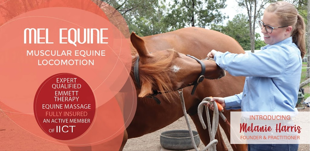 Mel Equine - EMMETT Therapy and Equine Massage | store | 50km Surrounding, Maitland NSW 2320, Australia | 0423051781 OR +61 423 051 781