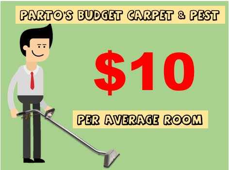 Partos Carpet Cleaning | laundry | 18 Gladioli Ct, Caboolture QLD 4510, Australia | 0468854009 OR +61 468 854 009